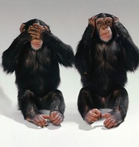 monos-ciego-sordo1